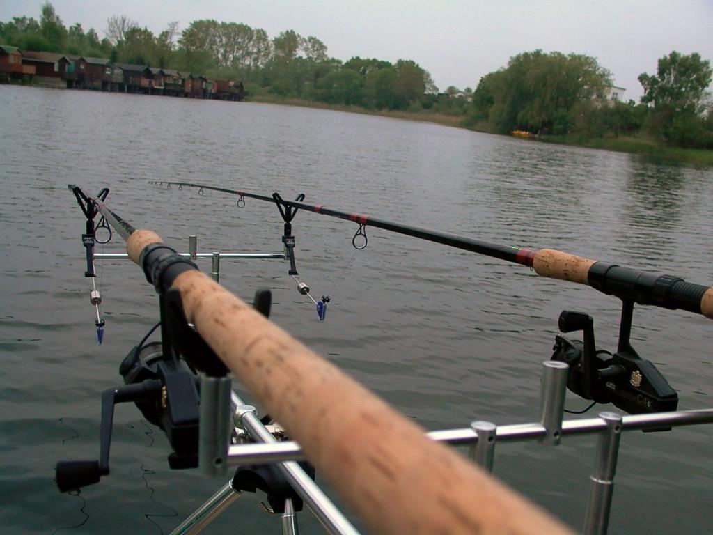 Karpfenangeln am Fluss
