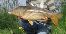 5 Tipps für Angler
