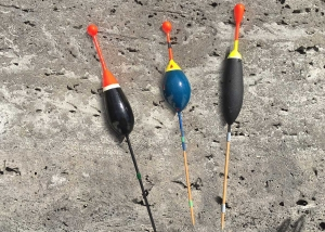 Posen zum angeln auf Karpfen